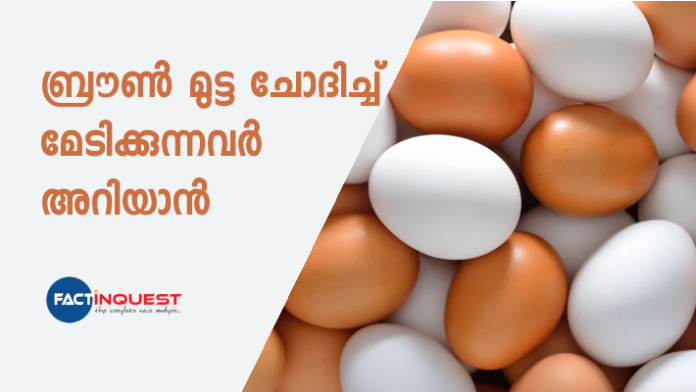 brown eggs are more expensive than white eggs