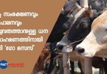 cow cess to implement protect and conserve cows in Madhya Pradesh
