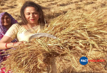 Agitating farmers don't even know what they want, says BJP MP Hemamalini