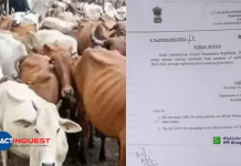 central government move to ban beef in lakshadweep